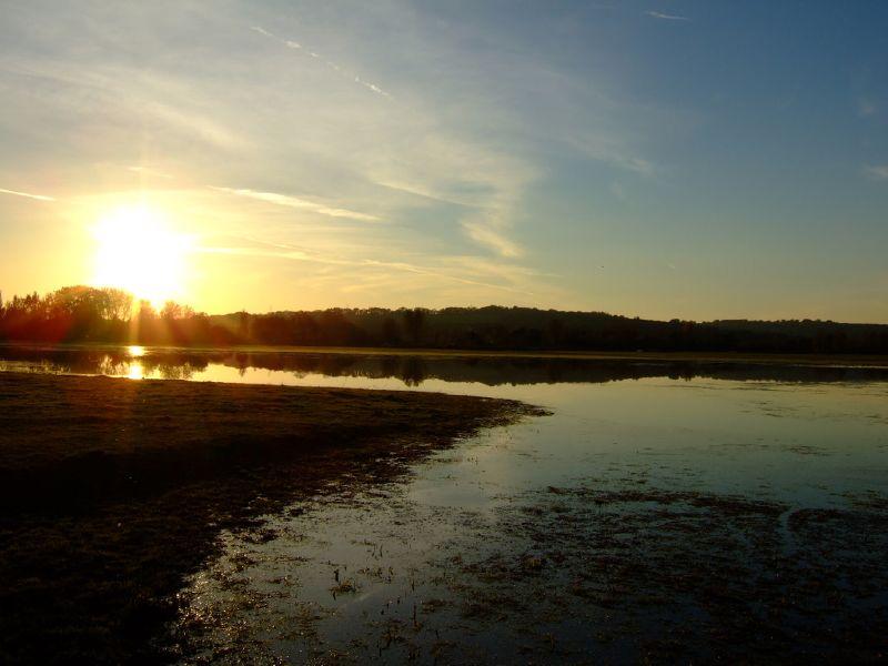 Port Meadow Sunset